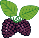 black_rasberry_highland_pyo2x