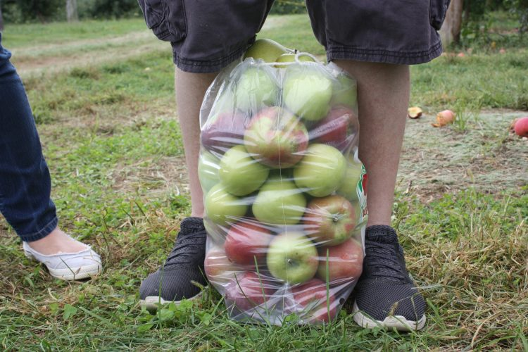 highland_orchards_apple_bag