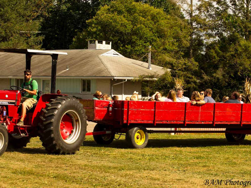 Highland Orchards tractor ride